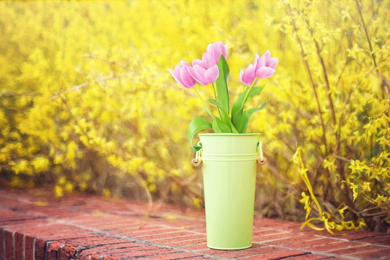 spring colorado weather